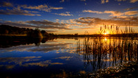 Brockholes Sunrise